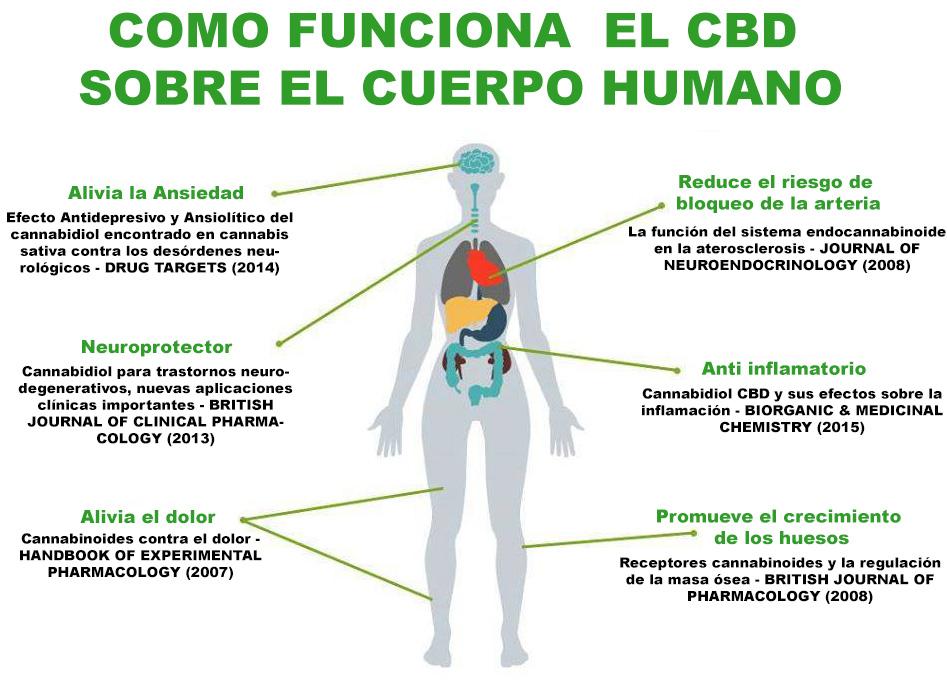 Liquido CBD, beneficios